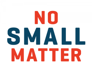 No Small Matter Online Strategy